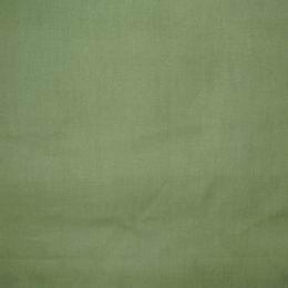 Ekka - zelenohn�d� - zv�t�it obr�zek