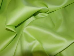 Pasat - záøivá zelená