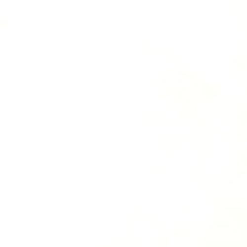 Dederon - bílá - zvìtšit obrázek