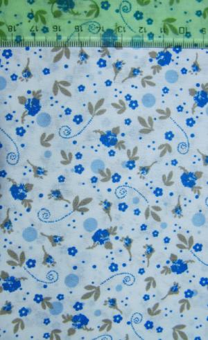 modré kytièky - zvìtšit obrázek